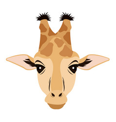Giraffe african animal safari zoo vector
