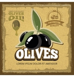 Vintage poster of premium quality olives vector