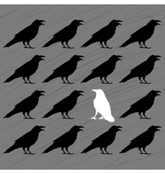 White crow among black crows vector