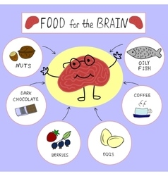 Info graphics proper nutrition for the brain vector
