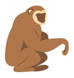 sitting monkey icon isolated vector image vector image