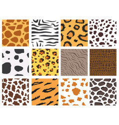 animal fur texture nature abstract wildlife vector image