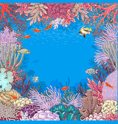 underwater background with corals and fishes vector image