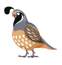 Cartoon happy quail vector