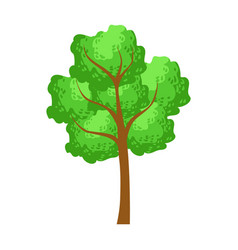 green tree element of a landscape colorful vector image