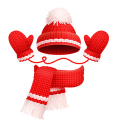 hat and scarf with mittens vector image
