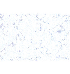 Seamless pattern white and grey marble vector