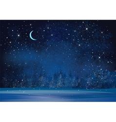 winter night vector image