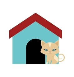 Cat fluffy animal colored house vector