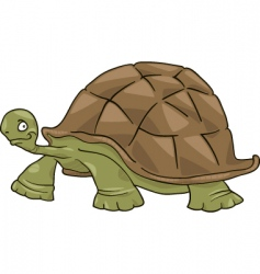 big turtle vector image