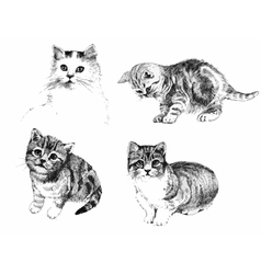 Black and white cats and kittens inkn hand drawn vector