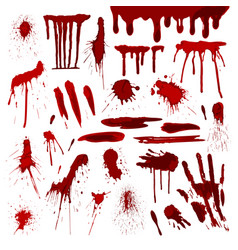 blood or paint splatters splash spot red stain vector image vector image