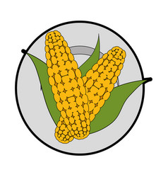 Isolated two corn symbol vector