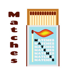 Flat of matchbox with matches box with matchsticks vector