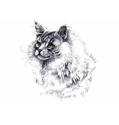 Black and white longhair cat ink hand drawn vector