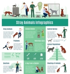 Stray animals infographics set vector