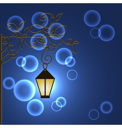 frnar with ornament night vector image