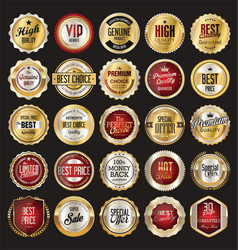 Retro vintage badge and label gold and silver vector