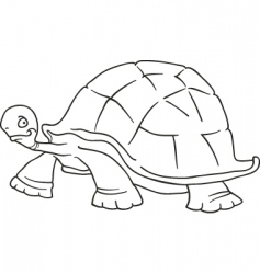 big turtle for coloring book vector image