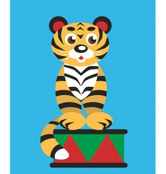 Tiger in the circus vector