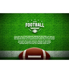 American football top view on green field vector