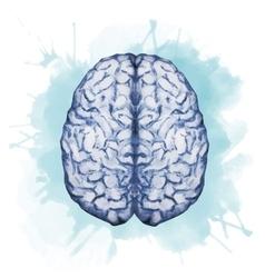 Watercolor brain vector