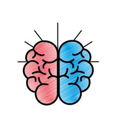 mental health smart brain icon vector image vector image