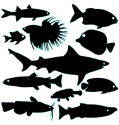 Silhouette of fish vector
