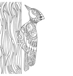Woodpecker coloring book vector