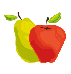 Pear and apple healthy fruit vector