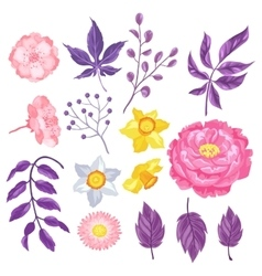 Set of decorative delicate flowers Objects for vector image vector image