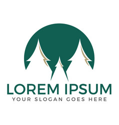 Spruce trees logo design vector