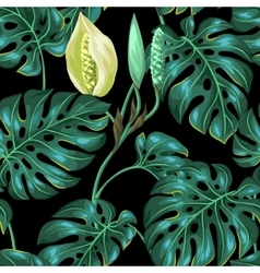 Seamless pattern with monstera leaves decorative vector