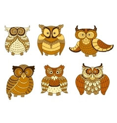 Brown and yellow spotted forest owl birds vector image