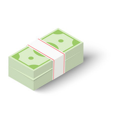 cash icon isometric style vector image