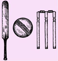 equipment cricket bat ball wicket vector image vector image