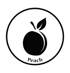 Icon of Peach vector image vector image