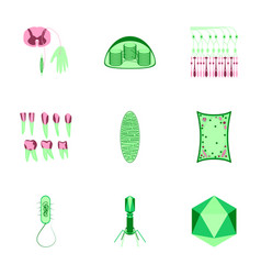 Icons set in flat style cells viruses teeth vector