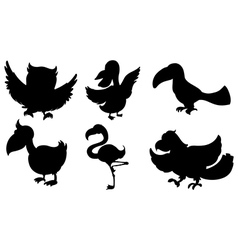 Silhouettes of the different kinds of birds vector