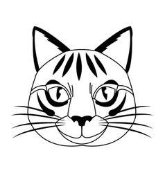 Cute head cat feline striped character vector