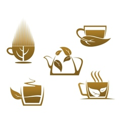 Herbal tea cups vector