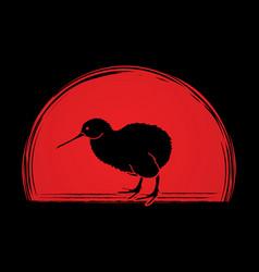 kiwi bird cartoon graphic vector image vector image