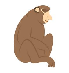 orangutan monkey icon isolated vector image