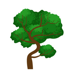Spreading green tree element of a landscape vector