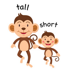 Opposite words tall and short vector