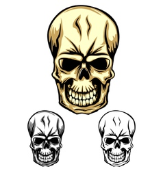 Skull color dwa vector
