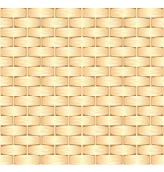 straw texture vector image
