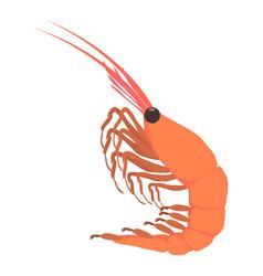 Shrimp icon cartoon style vector