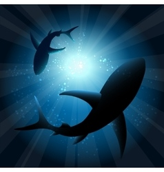 Sharks under water vector