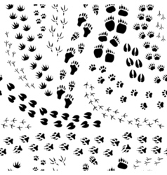 Animal Track Seamless Pattern vector image vector image